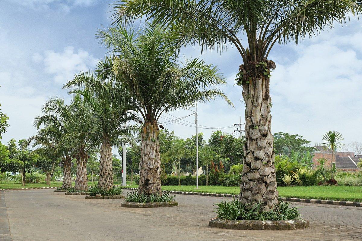 Jalan Utama Besar - Permata Royal Garden